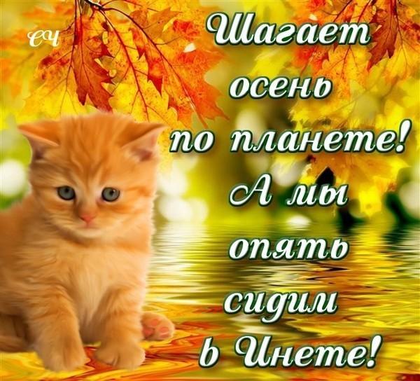 Картинки с осенью с надписями красивые